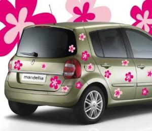 sticker_voiture_fleurs_02305_rose_ssz