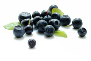 bilberry close up