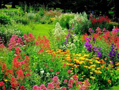 Comment faire de son jardin un endroit original for Jardin in english